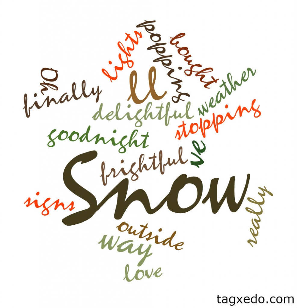 Snowflake Wordcloud by Tagxedo